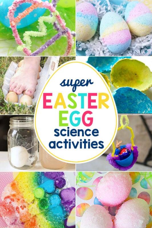 Egg Experiments