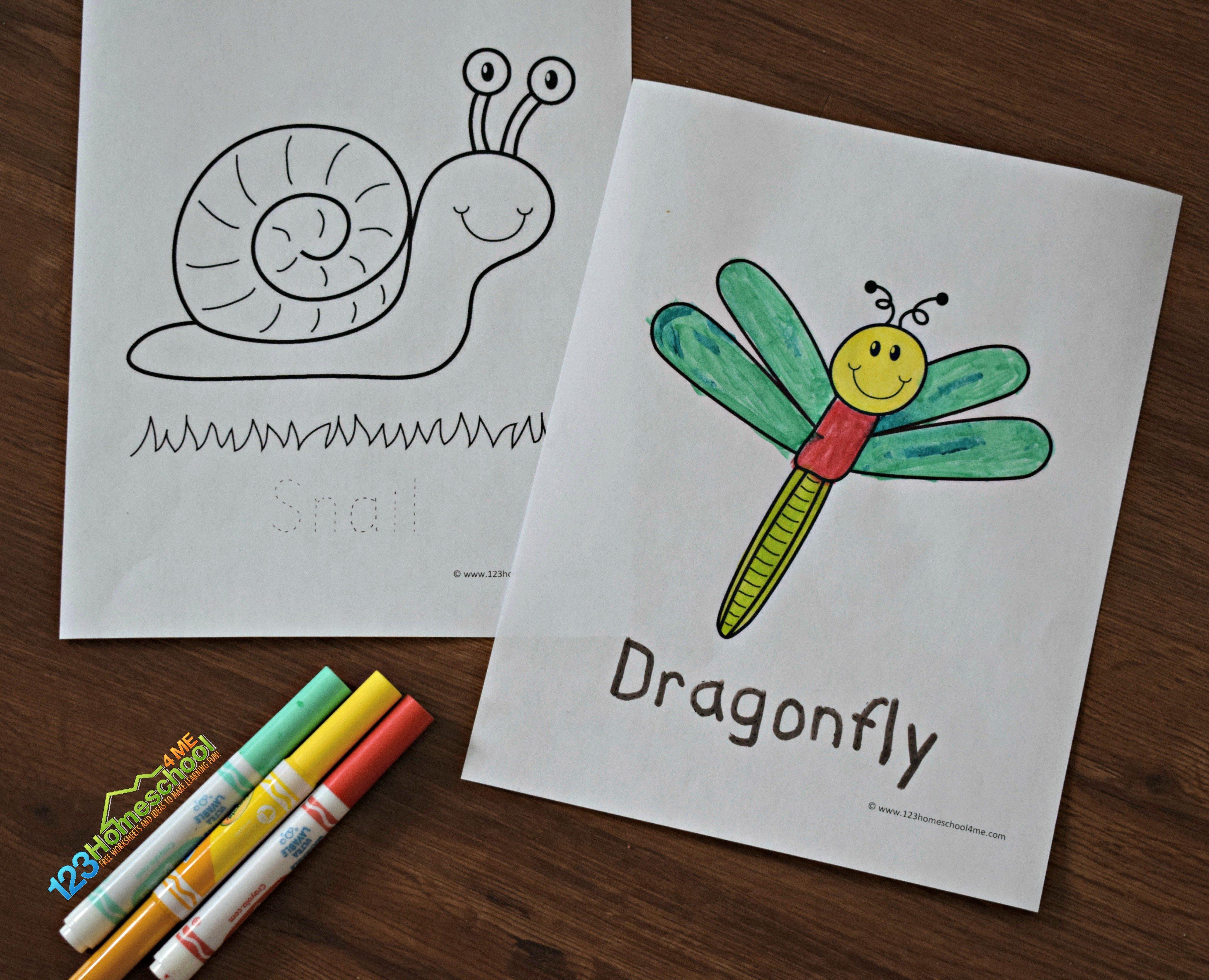 - FREE Bug Coloring Sheets