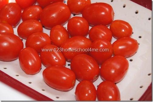 garden fresh cherry tomatoes