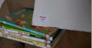 Making Sense of Reading Levels