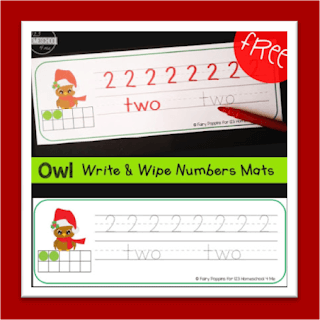 Chrsitams Owl Write and Wipe Number Practice