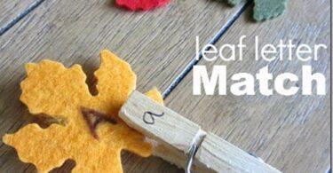 Alphabet Leaf Letter Match