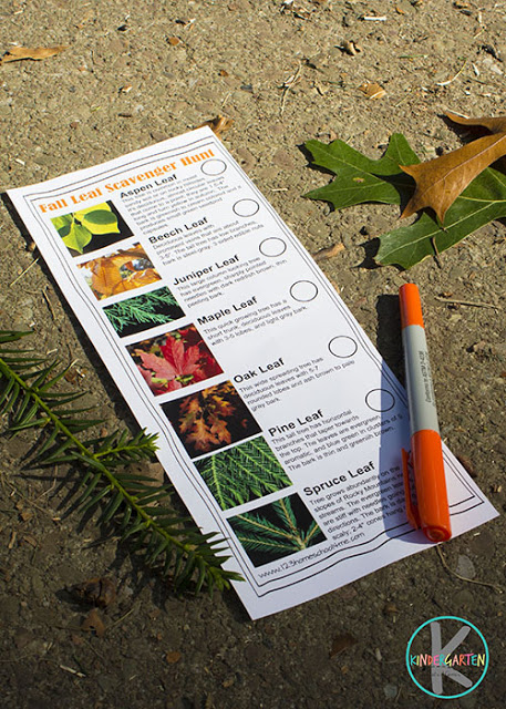 Fall Leaf Scavenger Hunt