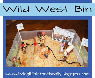wild west bin