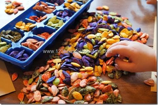 Fall Colored Pumpkin Seeds