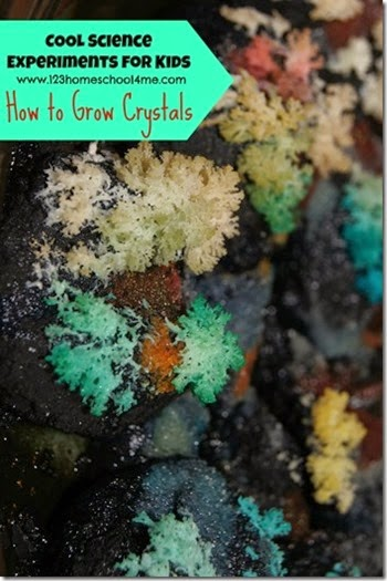 how to grow crystals - cool science expeirments for kids #homeschool #preschool #education