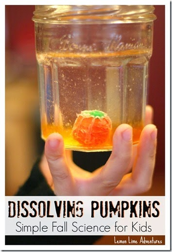 Dissolving Pumpkins: Simple Fall Science for Kids #preschool #scienceisfun #homeschool #education