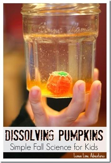 Dissolving Pumpkins: Simple Fall Science for Kids #preschool #scienceisfun #homeschool #education