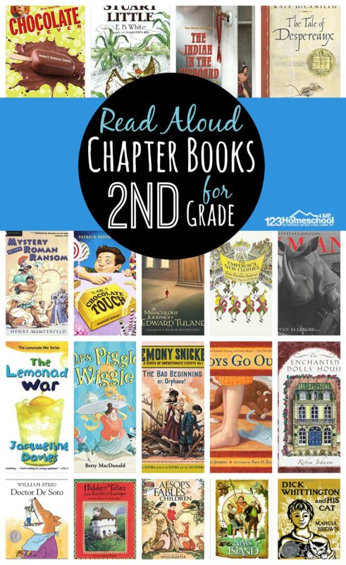 Looking for some fun to read and engaging read aloud chapter books for 2nd grade? These grade 2 reading books are great for engaging second graders with some engaging plots, rich vocabulary, and more!