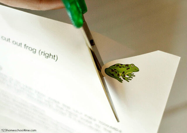 cut-out-free-printable-frog