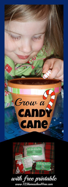 Grow a Candy Cane Christmas Activity for Kids with Free Printable
