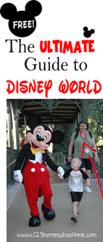 Ultimate Guilde to a family vacation at Disney World