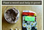 Plant a Word Garden