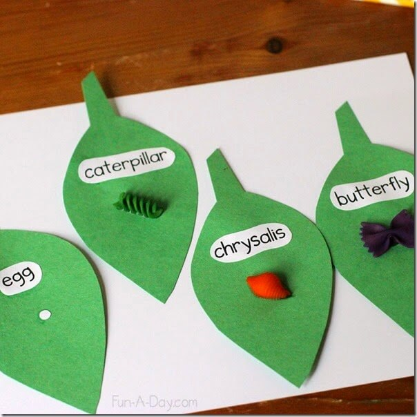 Buttefly Craft for kids - This is such a clever idea for teaching kids about butterfly lifecyles