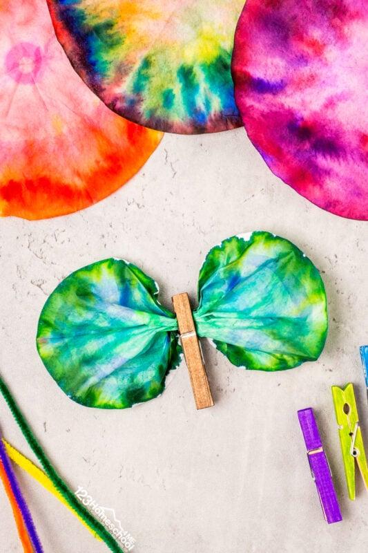Butterfly Craft Ideas