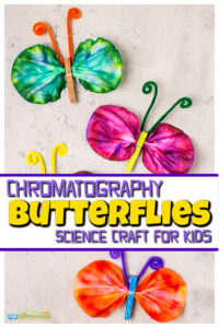 This beautifulbutterfly craft for kids helpds kids explore science by making stunningchromatography butterflies! Thiseasy butterfly craft is fun for preschool, pre-k, kindergarten, first grade, 2nd grade, 3rd grade, and 4th graders. Besides creating a funbutterfly craft idea, you will learn aboutchromatography for kids. This is a fun coffee fitler craft, spring science experiment or summer activity for kids!