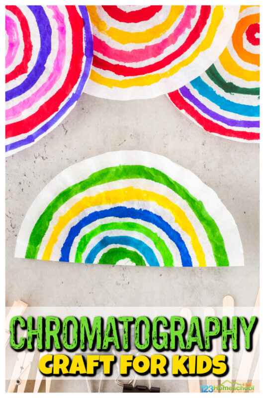 chromatography craft for kids