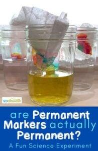 permanent marker experiment