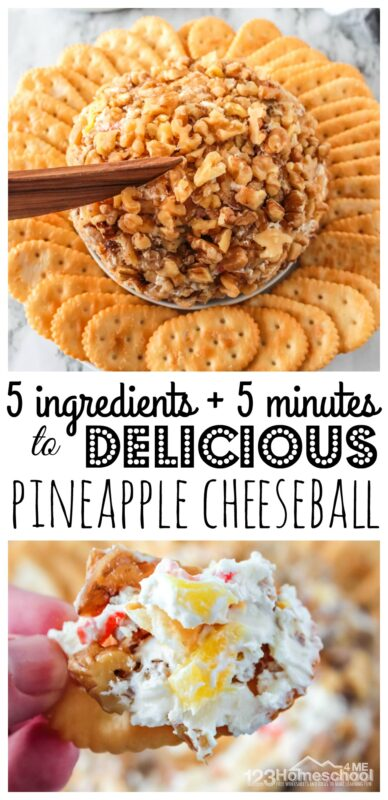 This pineapple cheese ball is the perfect cheese ball recipe! It is slightly sweet with an amazing flavor that will be a favorite with kids and grown ups alike. Eat this pineapple dip with your favorite crackers such as Townhouse or Ritz and you are ready. Our pineapple cheese ball recipe is one of my most requested recipes and will become your new go-to appetizer recipes. This is seriously YUMMY!