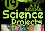 19 Edible Science Projects - so many fun educational kids activities to learn about science while having fun! They are all taste safe!!! #kidsactivities #preschool #kindergarten