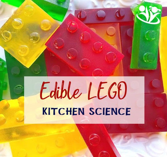 Gelatin is a mild-tasting protein derived from the collagen in animal tissue and it thickens liquids. Kids will be amazed to see how this simple powder can turn water into Lego Science.