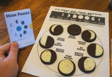FREE Moon Phases Mini Book