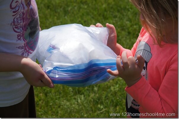 ice cream in a bag summer activity for kids