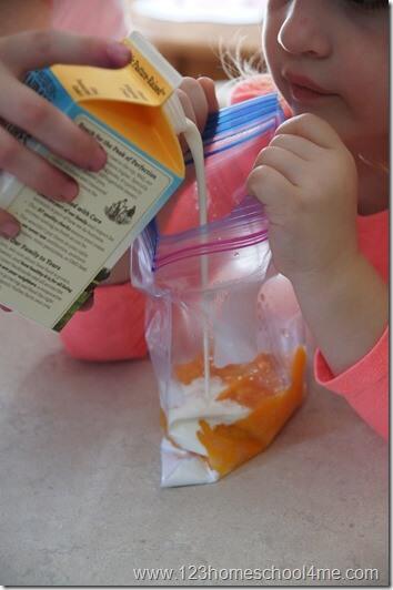 mix ice cream recipe in a quart bag