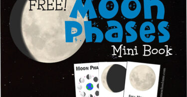 This moon phases printable allows kids to learn about the different phases of the moon