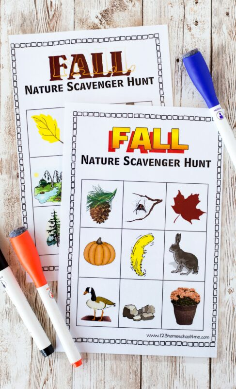super cute free printable Fall Scavenger Hunt for toddlers, preschoolers, kindergartners, grade 1 and grade 2 students