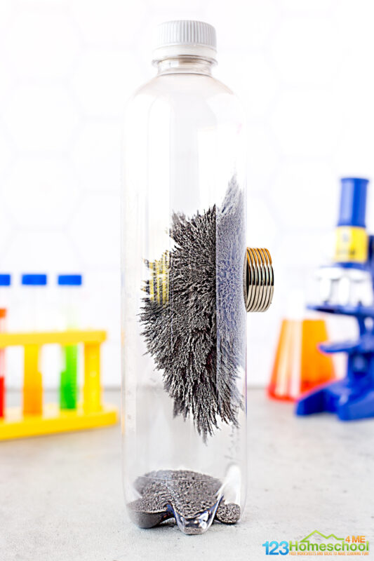 Magnet Science Experiments