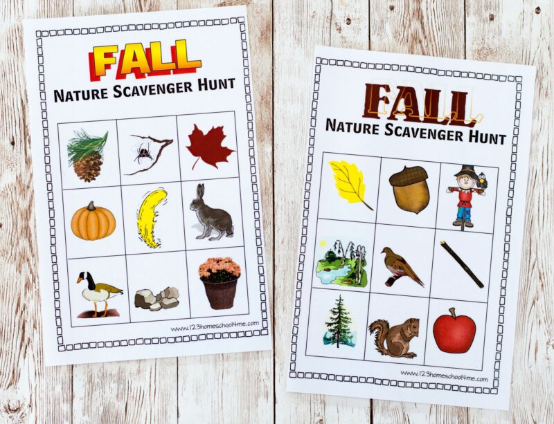 super cute free printable Nature Scavenger Hunt Printable