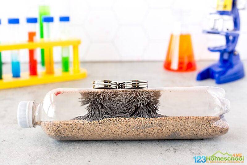 magnet experiments for children