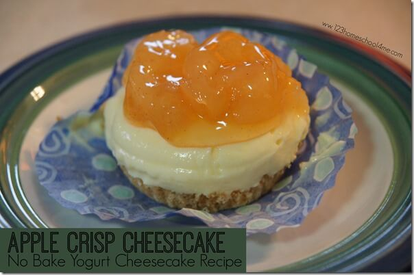 Apple Crips Cheesecake No Bake Yogurt Cheesecake Recipe