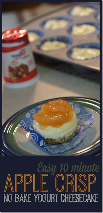 Easy 10 minute yoplait yogurt recipe, apple crips no bake yogurt cheesecake, yummy #SnackandSmile