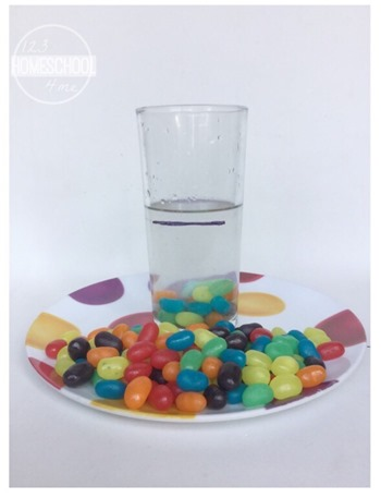 candy science experiment for kids