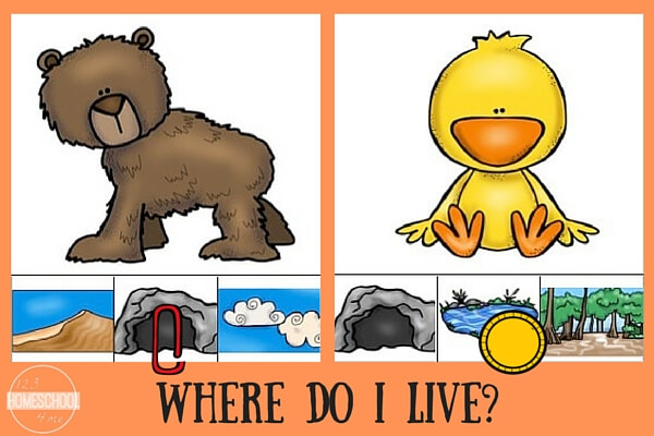 Animal Homes - Match animals to their habitats with these FREE clip it cards.