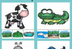 Animal Homes Activity for Kids