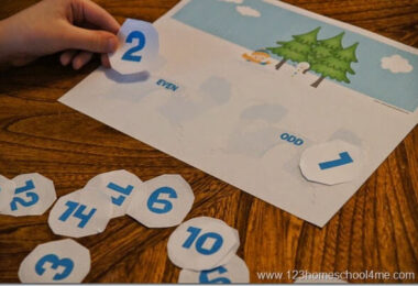 Even-and-Odd-Numbers-Snowball-Math-Activity