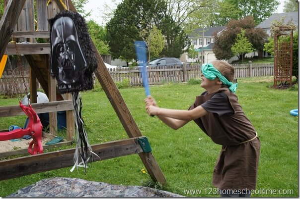 darth vadar pinata
