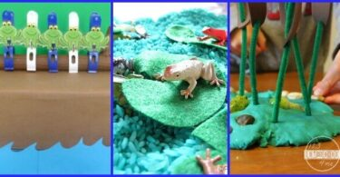 Fun Activities to celebrate Save the Frogs Day