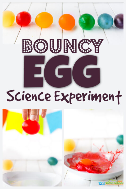 Kids are going to love this crazy coolbouncy egg experimert! Children will be amazed by thisegg experiment where they will literally dissolve the shell of a raw egg to create abouncy egg. Thisbouncy egg vinegar project is fun for preschool, pre-k, kindergarten, first grade, 2nd grade, 3rd grade, and 4th grade students. Plus our version of thisegg in vinegar experiment has a fun, colorful twist!