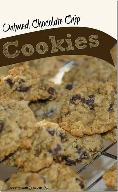 Oatmeal Chocolate Chip Cookies Recipe - this is a great, no fail recipe. Perfect to bake with the kids, snack for kids, or even to make into bars. YUMMY!