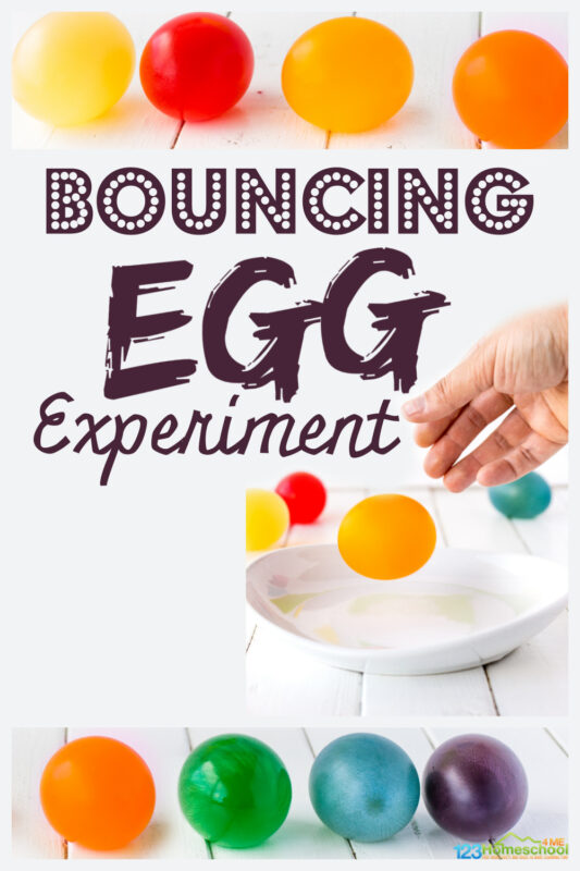 Colorfulbouncy egg experiment! Kids with litearlly dissolve the shell of a raw egg in thisegg in vinegar experiment to create abouncy egg.