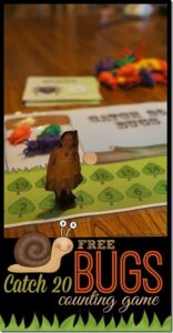 Free Catch 20 Bug Counting Game