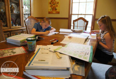 Homeschooling-in-only-15-hours-a-week