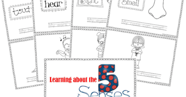 My Five Senses Book Free Printable
