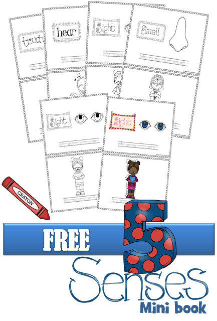 Learn about the 5 senses for kids with this my five senses book free printable. This 5 senses mini book is great for toddler, preschool, pre-k, kindergarten, first grade, 2nd grade, and 3rd graders. Simply download pdf file with 5 senses book printable to color, read, trace, and learn!