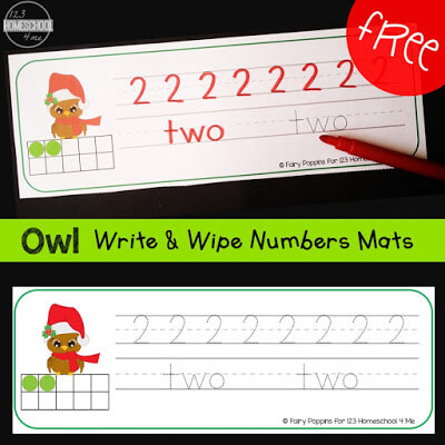Owl Write and Wipe Number Mats