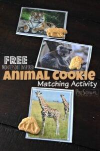 animal cookies matching activity